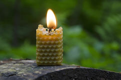 Beeswax candle Royalty Free Stock Photos