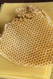 Beeswax honeycomb. Yellow plates of bees wax with rate, an ingredient for making candles royalty free stock photos