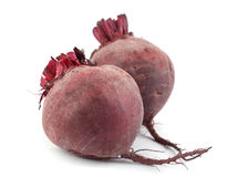Free Beet Royalty Free Stock Photo - 25112425