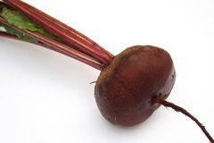 Beet. Red beet. It is isolated Stock Images