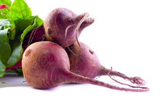 Beet Royalty Free Stock Images