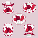 The beet. Abstract vector illustration logo for whole ripe vegetables red beet cut sliced natural product close up on background.Beet drawing consisting of tag Stock Photo