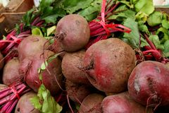 Beet /beetroot Stock Image
