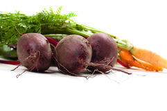 Beet and carrot Royalty Free Stock Images