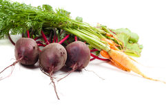 Beet and carrot Royalty Free Stock Photography