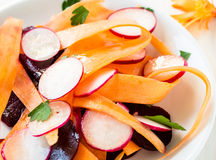 Beet carrot radish salad on white plate Royalty Free Stock Photo