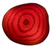 Beet carved Royalty Free Stock Photo