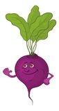 Beet character. Cartoon, vegetable, character beet with green leaves isolated on white background. Vector illustration Royalty Free Stock Photo