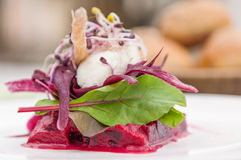Beet and cheese Stock Photography