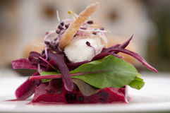 Beet and cheese Royalty Free Stock Photos