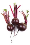Beet close up Royalty Free Stock Images