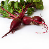 Beet closeup on white background Stock Photography