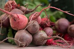 Beet fresh organic vegetable bunch Royalty Free Stock Image