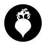 Beet fresh vegetable icon Stock Photos