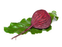 Beet with green leaf Royalty Free Stock Photo