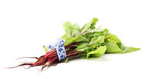 Beet greens. Bunch of young beet greens Royalty Free Stock Photo