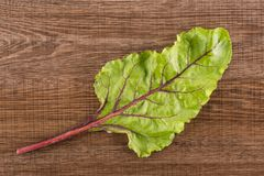 Fresh raw Beetroot isolated on brown wood. Beet greens flatlay isolated on brown wood background top view one green leaf Stock Photos