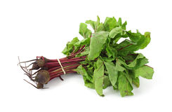 Beet greens with small beets stock image