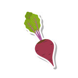 Beet icon. Vector flat style isolated beet icon on white background. perfect for Stock Photography