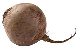 Beet isolated Stock Photos