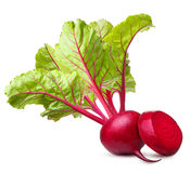 Beet  isolated Stock Images
