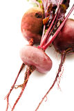 Beet with leaves Stock Photography