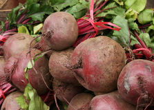 Beet in the market Royalty Free Stock Photo