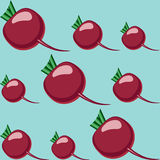 Beet pattern Royalty Free Stock Photos