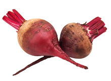 Beet purple Royalty Free Stock Image