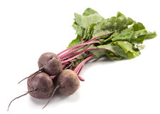 Beet purple vegetable Stock Image