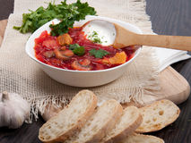 Beet-root red soup  with garlic and bread. Beet-root red soup served in a porcelain plate with garlic and bread Royalty Free Stock Photo