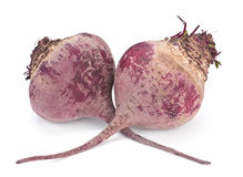 Beet root vegetable Royalty Free Stock Image