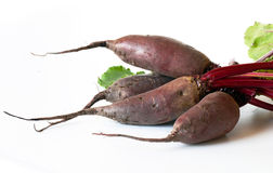 Beet roots Stock Photo