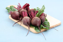 Beet roots. Some fresh and raw beet roots - ready to cook Royalty Free Stock Images