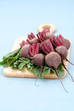 Beet roots Stock Image