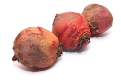 Beet Royalty Free Stock Photos