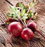 Beet roots. Stock Photos