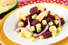 Beet salad with avocado and pickled maize Royalty Free Stock Photos