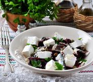 Beet salad with goat cheese, anchovies, capers, Parmesan cheese, parsley and olive oil Royalty Free Stock Photos