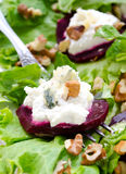 Beet Salad with goat cheese, walnuts, greens and herbs Royalty Free Stock Photo