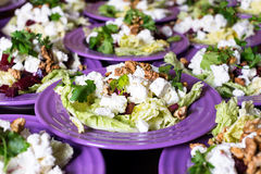 Beet salad with goat cheese, walnuts, greens and herbs and olive oil. Royalty Free Stock Photos