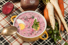 Beet soup cold. Stock Images