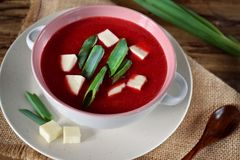 Beet soup-puree topped with bryndza and green onion royalty free stock photography