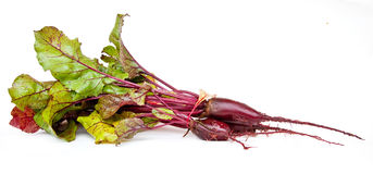 Beet  with tops. Ripe beet with tops on a white background Royalty Free Stock Image
