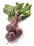 Beet vegetable Stock Photos