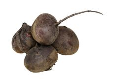 Beet on white Royalty Free Stock Photo