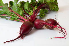 Beet  on white Royalty Free Stock Photography