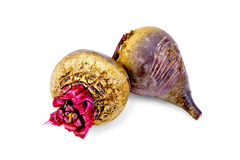 Beet whole Stock Photography