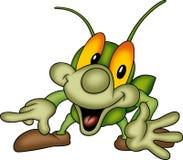Beetle 13 Stock Image
