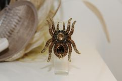 Beetle Brooch with Brown Stones Stock Images